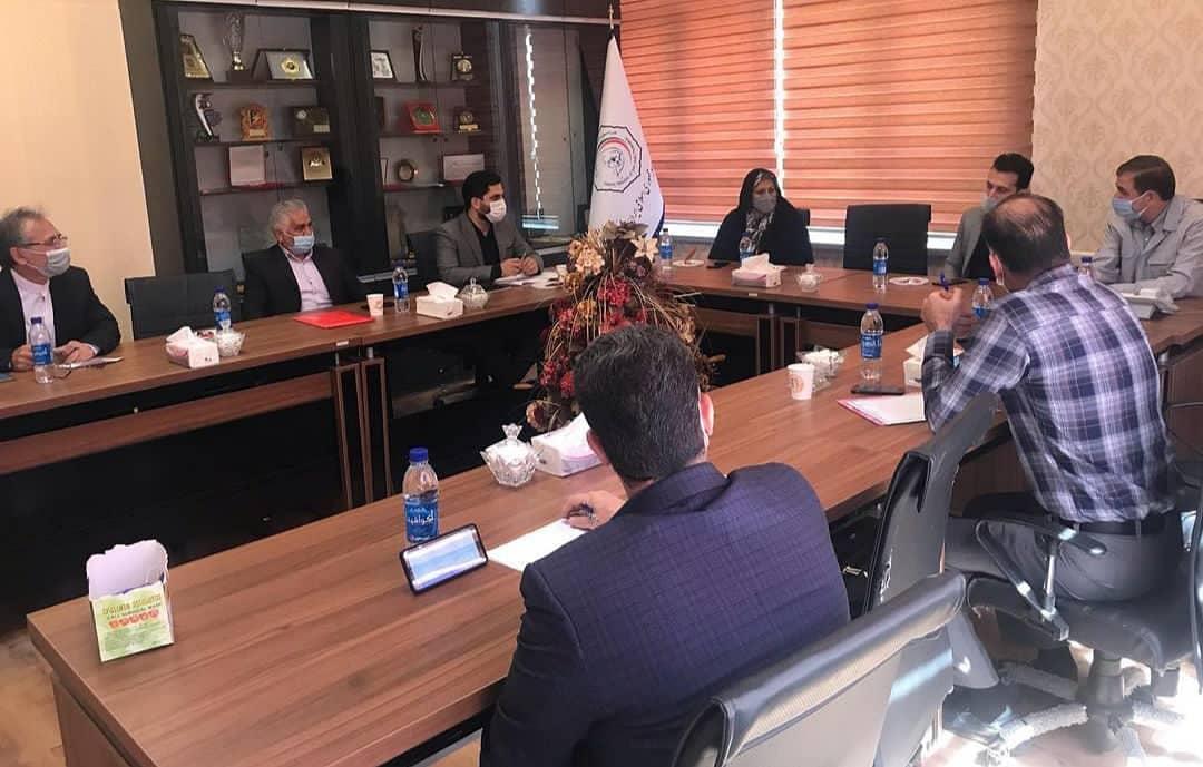 اولین نشست شورای راهبردی دفاع شخصی فدراسیون جودو برگزار شد